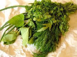 Grüne Soße-Kräuter